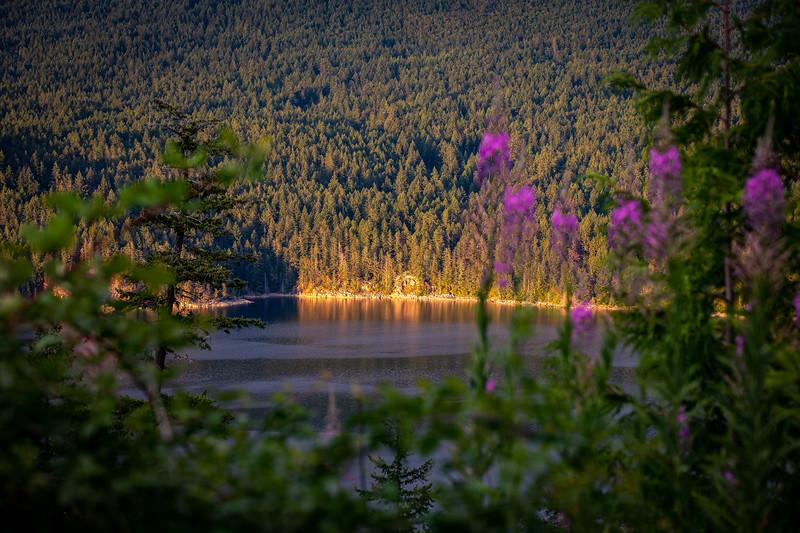Desolation Sound Kayaking