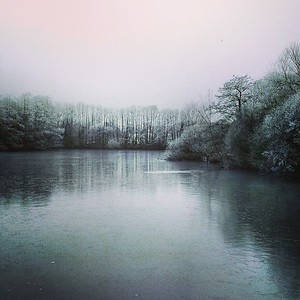 Day 16 (365) - Frozen Solid