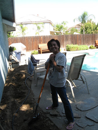 2009/09/17 >> Bush Removal
