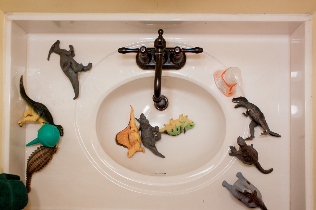 Bathroom Dinosaurs