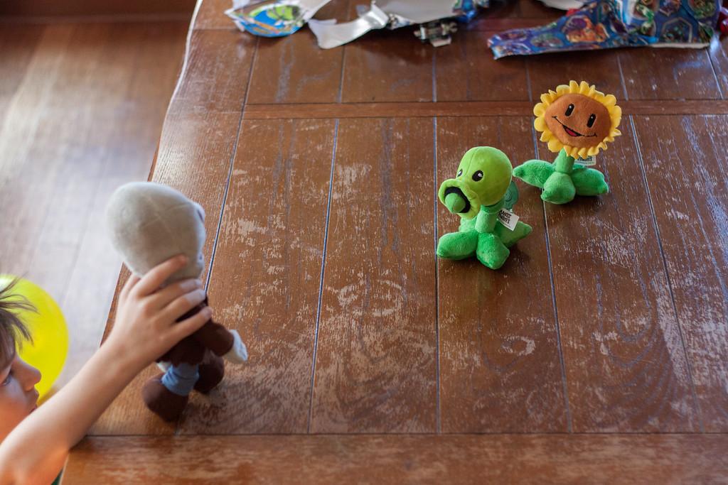 Ian's Birthday Presents -- Plants VS Zombies