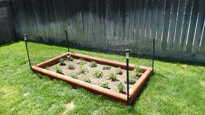 2014/04/13 >> Our Garden is born