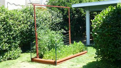 2014/06/07 >> Our Garden (8 weeks)