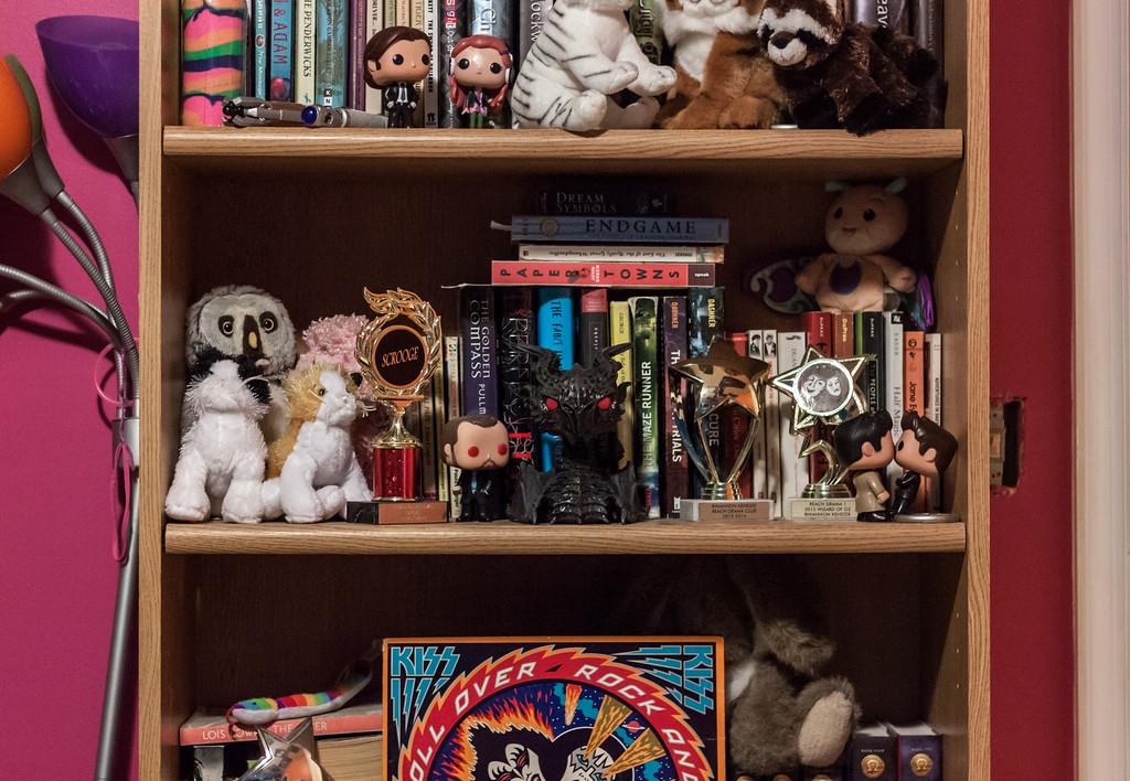 Rhiannon's Bookcase