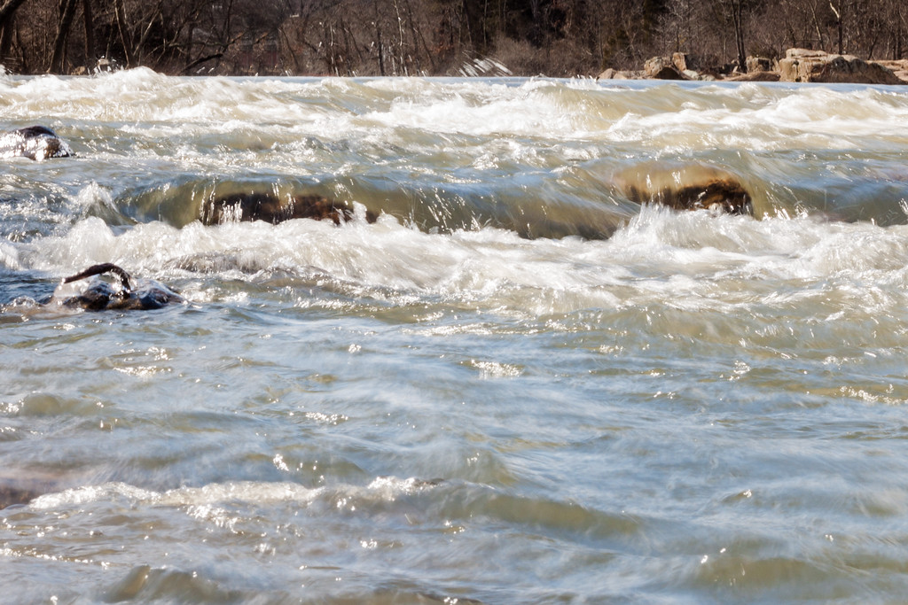 Rappahannock River at Ficklen Island