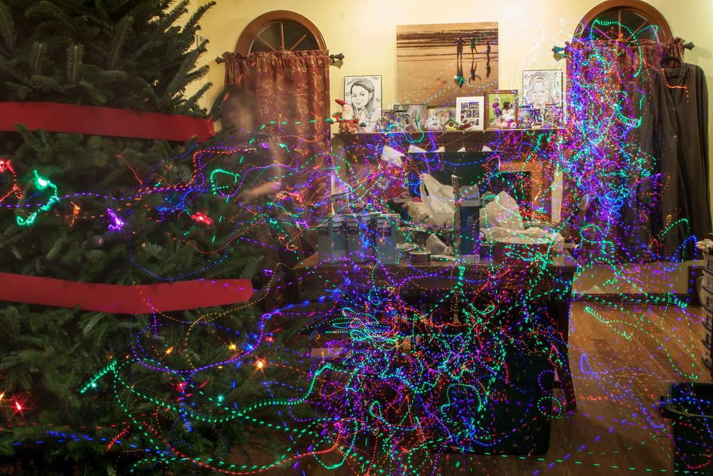 Week 48 {phtoographer choice} Lighting Up the Xmas Tree