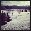 Snowy Backyard (364-366)