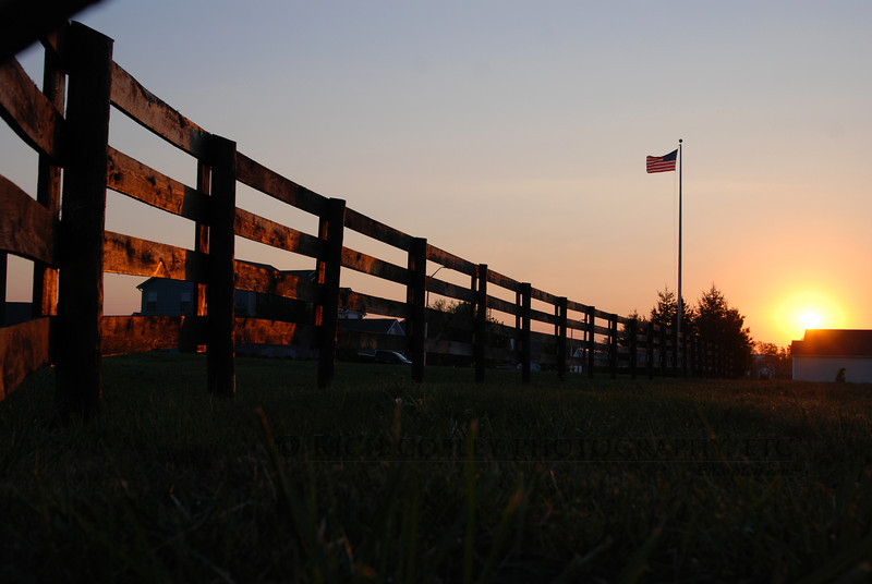 Aug. 25, 2012 - Up with the sunrise. (254/366)