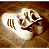 Aug. 9, 2012 - No. 1 son's back to school shoes, which I think have a marvelously retro look -- and I'm not just saying that because of Vignette's sepia setting.