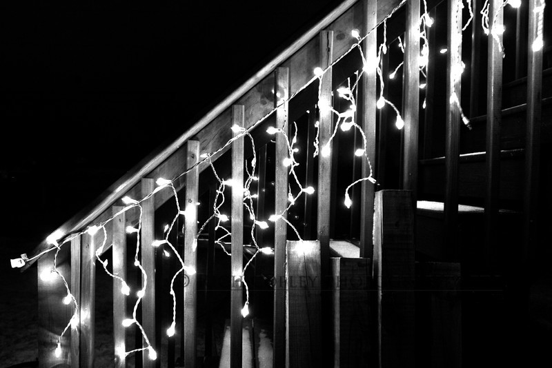 Jan. 12, 2012 - Wanted to shoot snow tonight. Didn't get a lot of snow, so I shot icicle lights. (28/366)