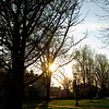 March 20, 2012 - Gratz Park, sunset. (96/366)