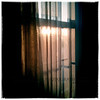 Nov. 9, 2012 - Morning light, diffused. (329/366)