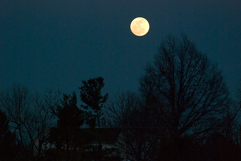 March 7, 2012 - There is a moon. It's called The Moon. (83/366)