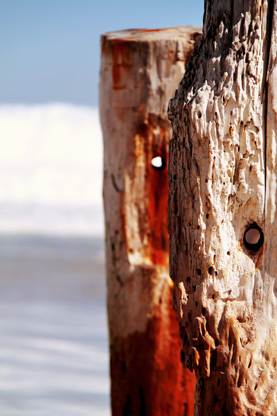 Eroded Wooden Poles