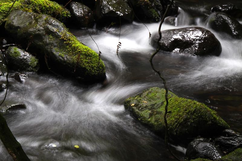 Wearisome Stream Flow Forth