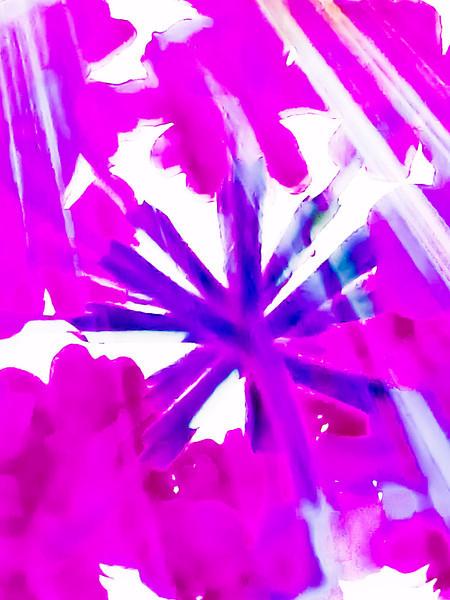 20110704-P1010535-Edit