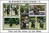 Alphabet Challenge:  T – Triton and the tritons
