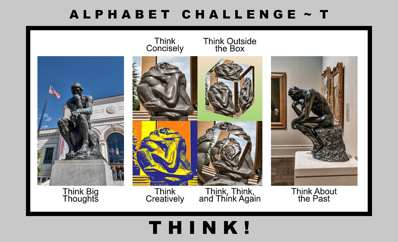 Alphabet Challenge:  T – Think!