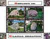 "Donna's Alphabet Challenge: G (August 25, 2013)<br /> <br /> The Geology of Glacial Erratics - One pegmatite and three puddingstones.<br /> <br /> DP237-2013  Posted August 25; created August 24 from photos taken August 20 and 23.<br /> (The original shots, plus a few others, for the puddingstones can be found in this gallery:  <a href=""http://arctangent.smugmug.com/Nature/The-Physical-World/Puddingstones/31429825_2b3SH4"">http://arctangent.smugmug.com/Nature/The-Physical-World/Puddingstones/31429825_2b3SH4</a> )<br /> <br /> The present day exposed geology of SE lower Michigan is the result, in large part, of a succession of advances and retreats of glaciers.  During advances, large boulders, some weighing a number of tons, were transported hundreds of miles, surrounded by ice.  When the ice matrix that carried them melted, they were left in place.  Such specimens, which are found far from their geologic points of origin, are termed glacial erratics.  Four such examples are shown in my G montage.  They are, clockwise from the upper left (center images):<br /> (A)  A pegmatitic granite, now at the entrance to Hidden Lake Gardens, but found about 25 miles west of there<br /> (B)  A jasper puddingstone, found between Ann Arbor and Ypsilanti and moved to the UM campus in 1869<br /> (C)  A puddingstone with small inclusions, including some jasper and one amethyst region, found near the train depot in Ann Arbor and moved to the UM campus in 1862<br /> (D)  A Michigan puddingstone with a variety of types of inclusions, some of which are themselves conglomerates;  point of deposit unknown, but now resting beside the parking lot near Geddes Dam.<br /> The corner images nearest each of the central scenes, and the backgrounds for those scenes, were taken from close-up shots of the respective specimens.  Note, in particular the blue-green matrix for the jasper puddingstone, no doubt from copper bearing salts (upper right), and the violet colored amethyst(?) crystals in the lower right."