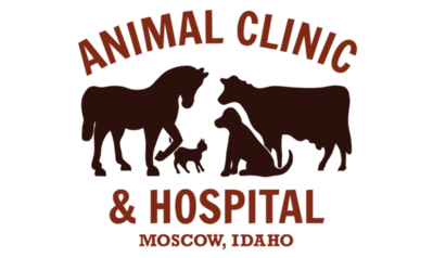 Moscow-AnimalClinic-logo2016-02