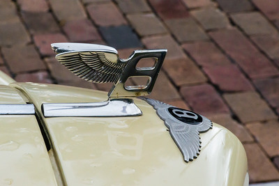 Bentley Hood Ornament III