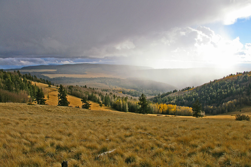 Afternoon rain approaching Escudilla Mountain from the southwest (Oct 2008)