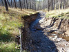 Bear Creek Trail, Bear Creek flash flood washout after fire (Oct 2013)