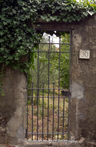 Garden gate, Florence, Tuscany, Italy