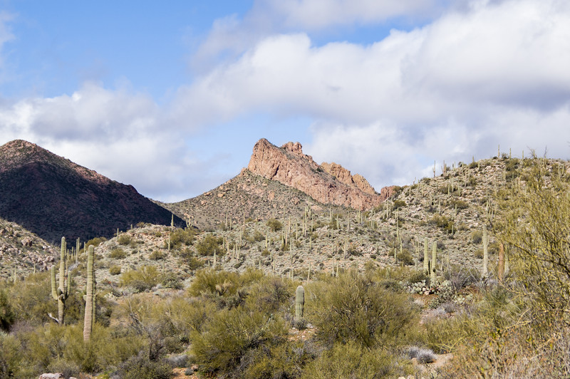 View from Castle Hot Springs road, AZ (Feb 2019)