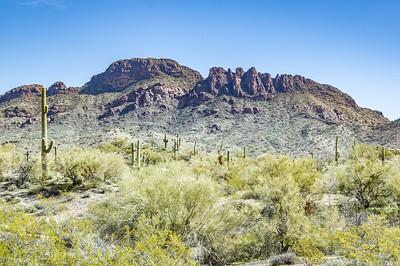Vulture Peak, Wickenburg, AZ (Feb 2019)