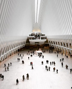 Inside The Oculus at the World Trade Center hub in New York City #nyc #oculus #latergram #newyork