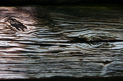 Old Wood Study (Color) 06