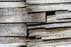 Old Wood Study 18