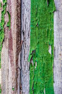 Alaska Green Door