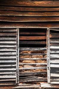 Old Wood Study 33