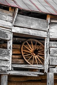 Old Wood Study 28