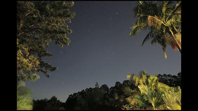 Forrest Night-lapse - Byron Shire, Australia