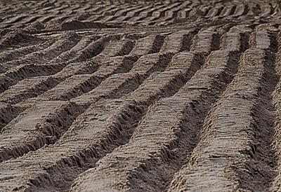 Sand Abstract - Long Beach CA