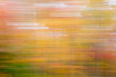 Fall Abstract Horizontal