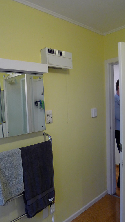 Mirror unit before