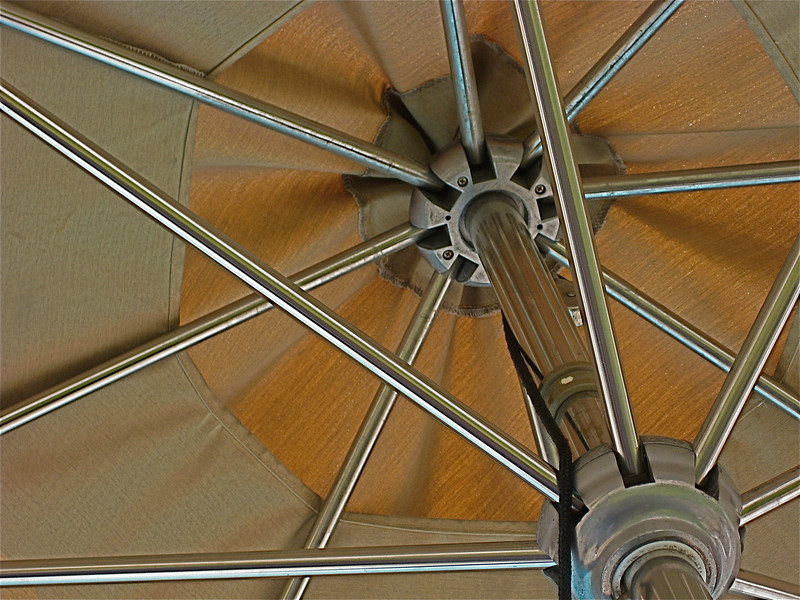 Umbrella Underside