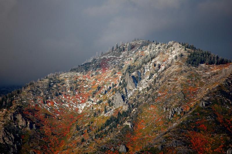 Autumn's Color Scheme