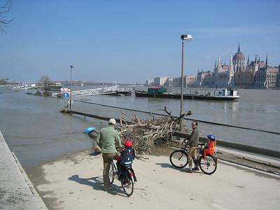 Flood of the Danube