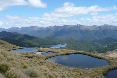 Mount Burns, Fiordland
