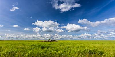 South Alligator Wetlands