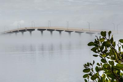 A. Max Brewer Bridge
