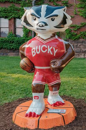 Bucky-On-Parade-43
