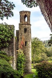 Blarney Castle V