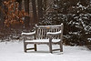 A bench that overlooks Dow Prairie<br /> <br /> Nichols Arboretum, Ann Arbor, Michigan<br /> January 14, 2012