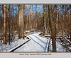 January ~ top shot<br /> It looks like 'save the trees' was the design plan for laying out this boardwalk trail through the floodplain of Fleming Creek and the Huron River.<br /> <br /> January 15, 2012<br /> Hoyt Post Trail, Forest Park<br /> Washtenaw County, Michigan